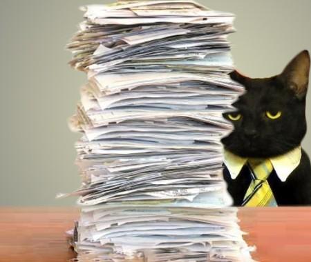 business-cat-paperwork-from-cheezburger-450x380